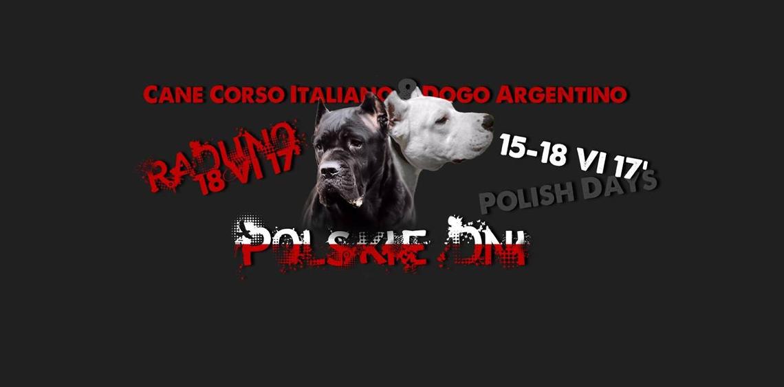 Polskie Dni Cane Corso Italiano i Dogo Argentino
