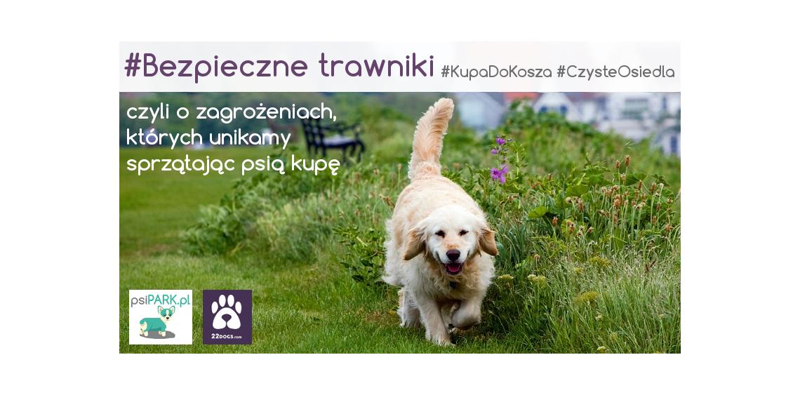 #BezpieczneTrawniki czyli o zagrożeniach, których unikamy sprzątając psią kupę