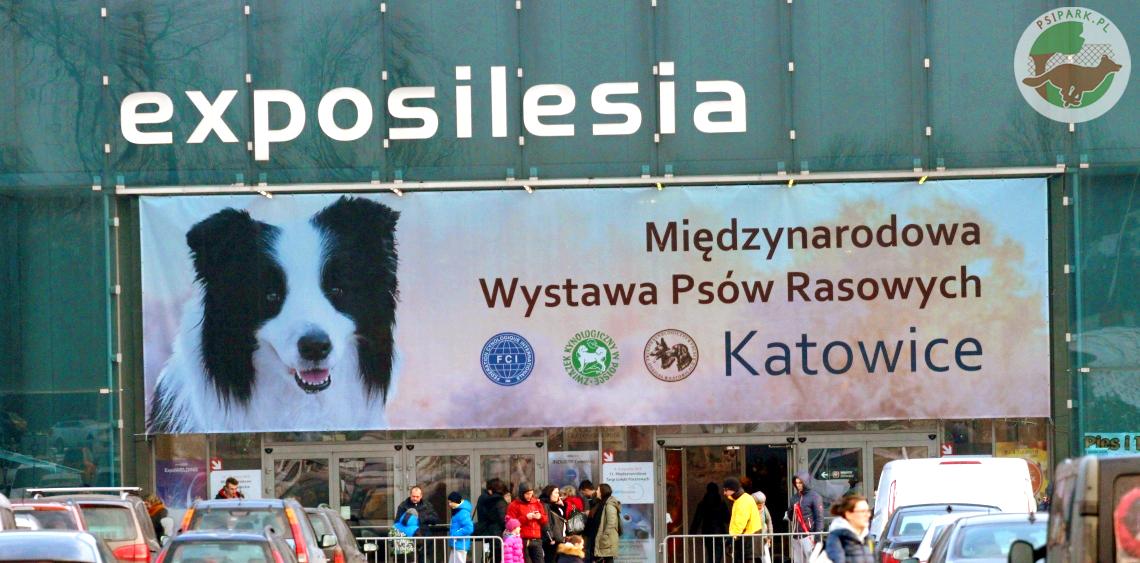 XXII Międzynarodowa Wystawa Psów Rasowych, CACIB Katowice 2018 r. w Expo Silesia