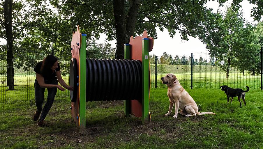 Spotkanie z psim behawiorystą w Porcie Łódź