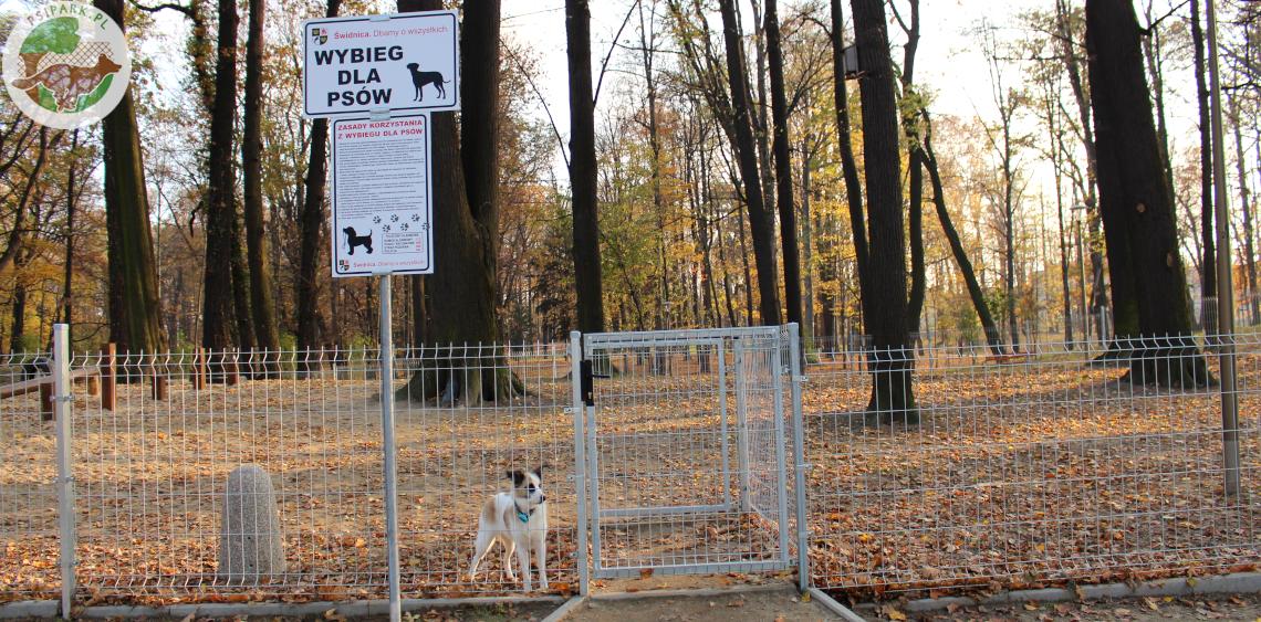 Wybieg dla psów Świdnica Park Sikorskiego