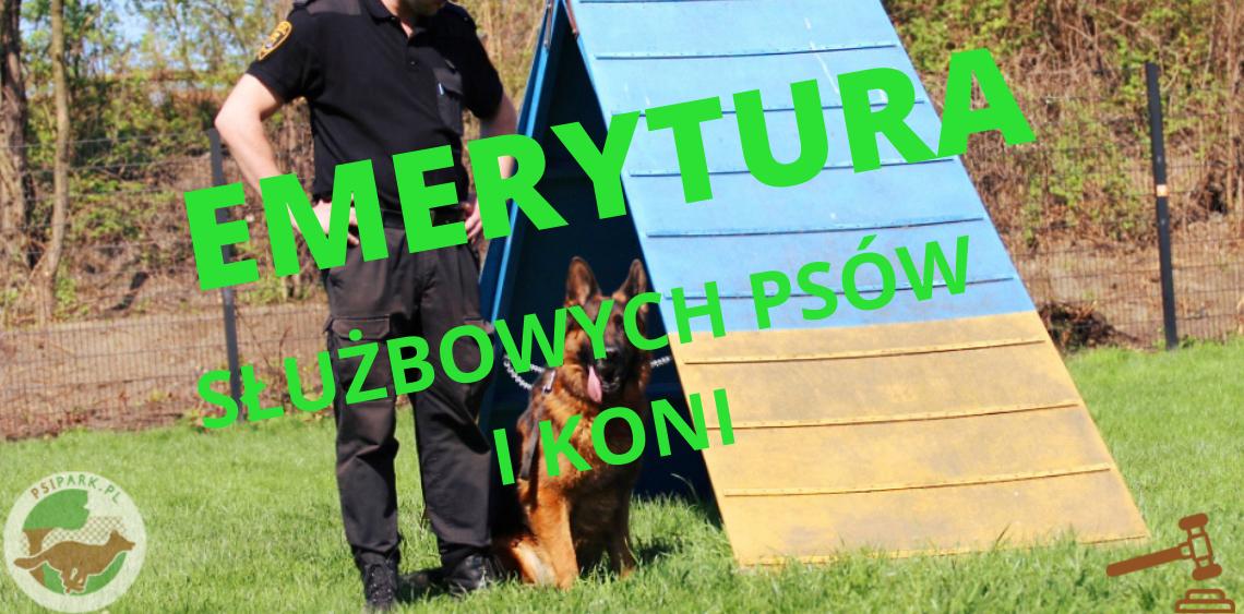 emerytura służbowych psów i koni psipark.pl